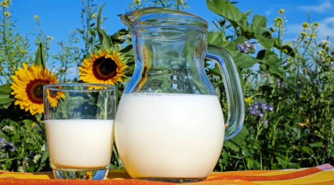Die Lüge von der Milch
